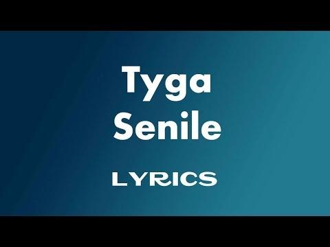 Tyga , Nicki Minaj & Lil Wayne - Senile ( Lyrics )
