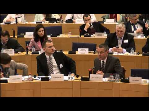 European Parliament - Committee on Constitutional Affairs 26-02-2013