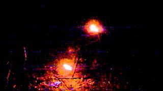 Distelfink Sunneraad 2012 - 3