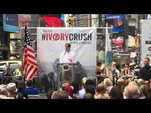 Dan Ashe, Dir US Fish and Wildlife Opens Ivory Crush 2015 Times Square