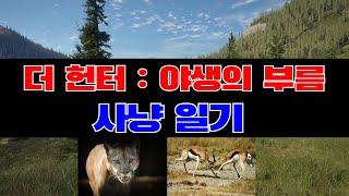 4K 더 헌터 : 사냥 일기 - 퓨마 Puma, 스프링…