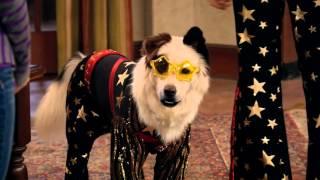 Собака точка ком (Сезон 2 Серия 13)