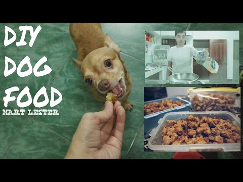 DIY Dog Food   Homemade Dry Dog Food