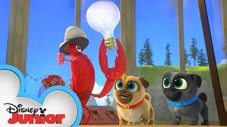 Light for the Lighthouse 💡  Puppy Dog Pals   Disney Junior