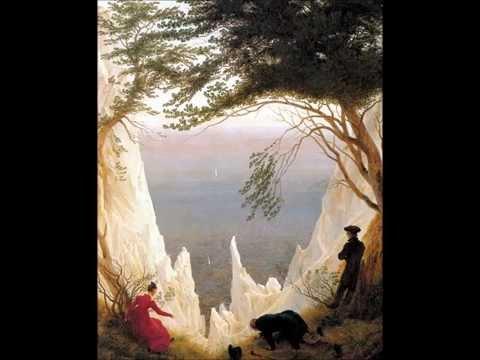 Franz Schubert: string quintet in C major D. 956. L'Archibudelli