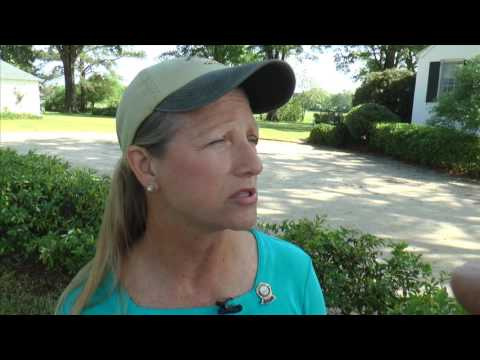 HORSE TALES   THOROUGHBRED TRAIL MASTER