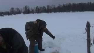 Подледная рыбалка ленка