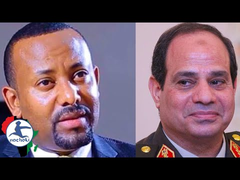 Ethiopia Chooses New Prime Minister as Egypt's Strongman Sisi Wins Re-Election