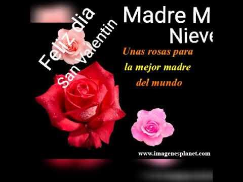 Feliz Dia San Valentin Madre Nieves Orbe Youtube