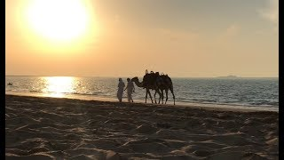 Camping in the Middle East.  تخييم في الشرق الأوسط  Sunset Music