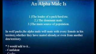 How To Become An Alpha Male Online