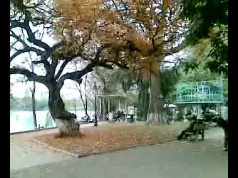 Lộc Vừng Hồ Gươm 2009