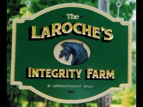 Welcome to Integrity Farm, Breeders of Labrador Retriever pups.