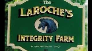 Welcome To Integrity Farm, Breeders Of Labrador Retriever Pups.