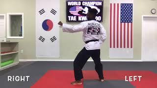 Taegeuk Yook jang(6)
