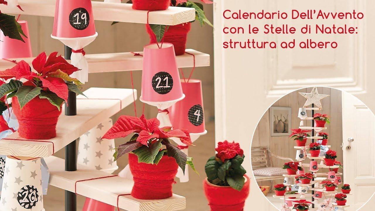 Idee Calendario.Idee Decorative Calendario Dell Avvento Ad Albero Con Stelle Di Natale