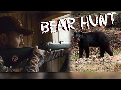 RIFLE BLACK BEAR HUNT IN CANADA