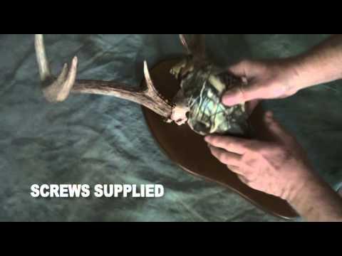 I Know - Replica Deer Skulls / Wild Wear Hat Clips