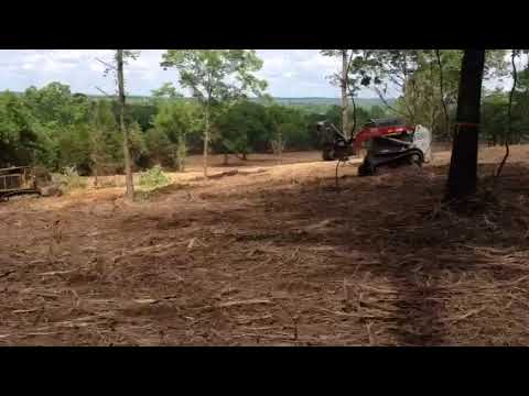 Tree eater clearing brush