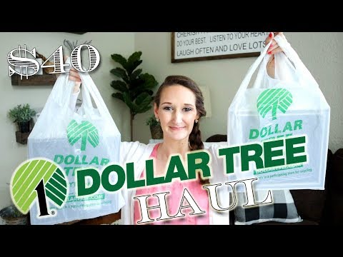 Dollar Tree Haul | MAY 2019