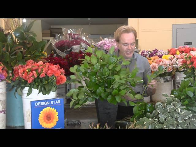Designing With Mixed Greens By Michael Gaffney Youtube
