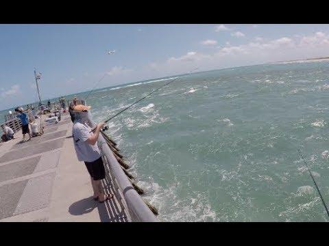 Florida Fishing Road Trip Day 1 - The Stuggles of Shore Fishing
