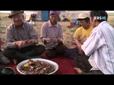 세계테마기행 - World theme travel_몽골 4부 초원의 아들 딸들_#003
