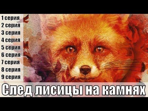 След лисицы на камнях 1, 2, 3, 4, 5, 6, 7, 8, 9 серия / русский детектив 2019 /обзор
