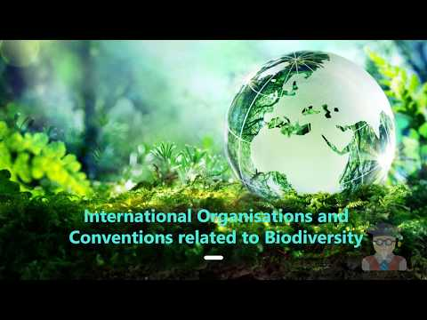International Organizations and Conventions related to Biodiversity
