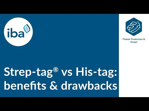 Protein Purification: Strep-tag® vs His-tag - benefits and drawbacks of the two systems