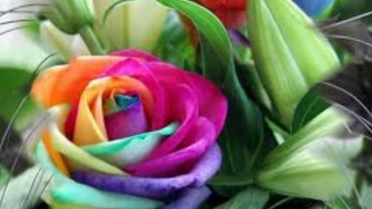 Las 10 Flores Mas Raras Del Mundo Youtube