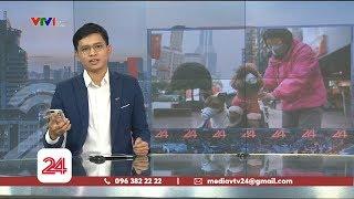 Chuyện cách ly: Người dại làm hại người khôn | VTV24