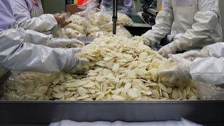 설날 명절 떡국떡 하루 사용 쌀만 2톤! 가래떡 뽑아내…