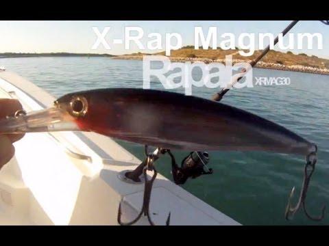 King Mackerel Fishing Rapala X-Rap Magnum 30 High Speed Trolling