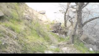 Обзор Рыболовных мест г. Запорожье ул. Скальная.(Всем горожанам рекомендую посетить это место красивейшая природа, прекрасная рыбалка-если повезет. В данны..., 2016-04-19T16:28:40.000Z)