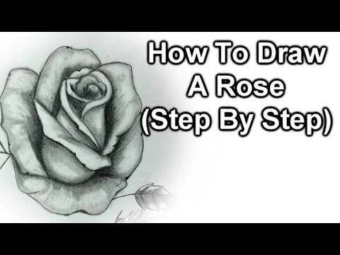 How to draw a rose step by step youtube for How to step by step draw a rose