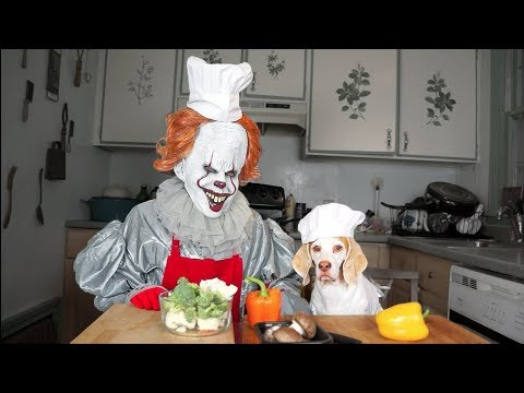 Pennywise & Dog Cook Dinner Together: Funny Dog Maymo