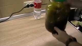 Рецепт приготовления мятного ликера в домашних условиях.
