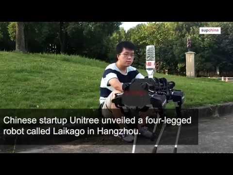 Meet China's four-legged robot BigDog
