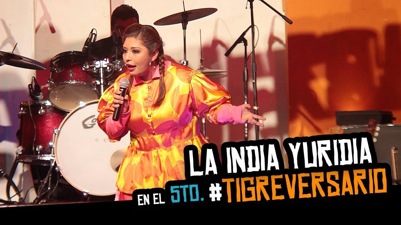 La India Yuridia En El 5to Tigreversario Youtube