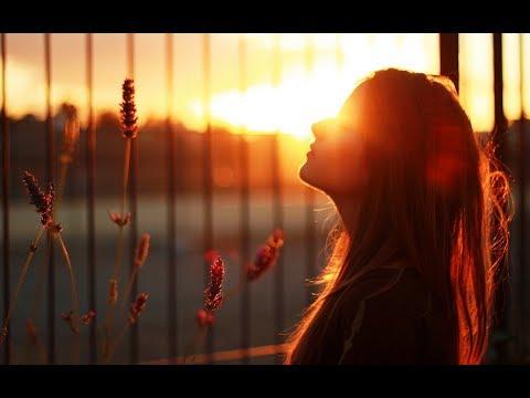 In The Still Of The Night! (Frank Chacksfield) (Lyrics+Song/Artist Info) Romantic 4K Music Video!