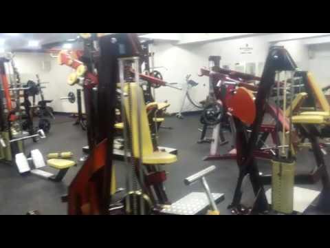 Armony Gym Iasi Bodybuilding Zone