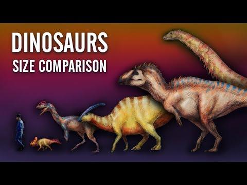 DINOSAUR Size Comparison. Paleoart