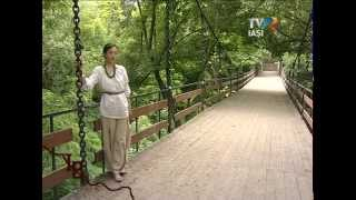 Batuta Moldoveneasca-Advahov Costel Vatamanu Tyros 4
