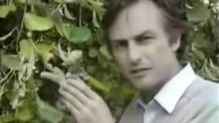 Richard Dawkins - The Blind Watchmaker (1987 evolution documentary)