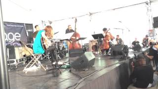 Tomeka Reid Quartet at Chicago Jazz Festival, August 31, 2014 - Wabash Blues (1/3)