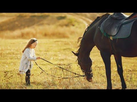 Lost Control || Equestrian Music Video