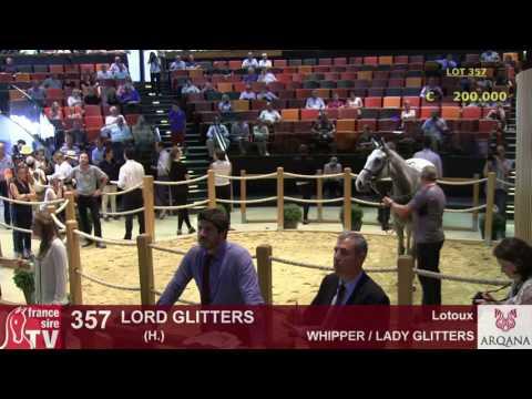 Top Price N° 2 J2 - 270 000E - Lord Glitters - H13 - Arqana - Vente d