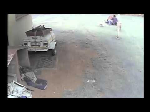 Dog Attacks an Intruder || ViralHog