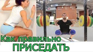 Back SQUAT / ПРИСЕДАНИЯ со штангой [ENG SUB] S.Bondarenko (weightlifting & crossfit)